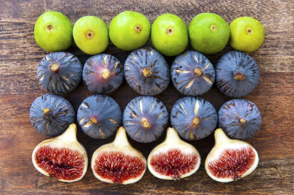 varieties-of-ripe-figs-151125611-582b617b3df78c6f6aeb3074